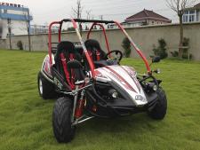 Hammerhead GTS150 buggy